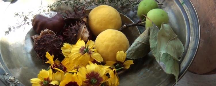 Természetes festőnövények (Kemendi Ágnes)